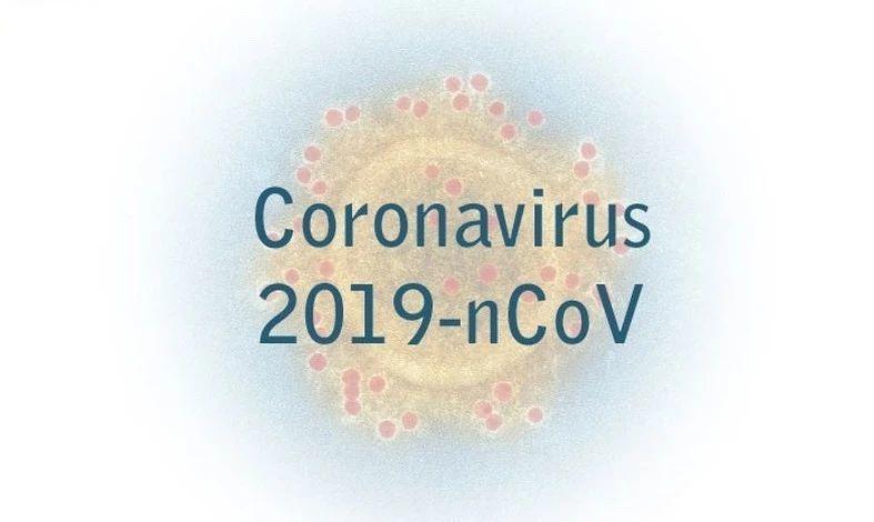 数亿年的战争:病毒与免疫系统